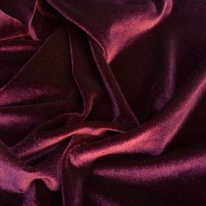 Catifea elastica burgundy