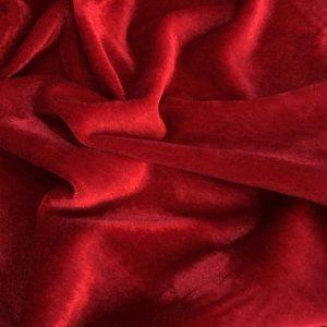 Catifea elastica rosie