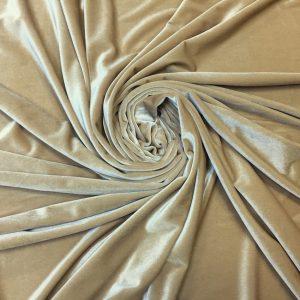 Catifea elastica beige
